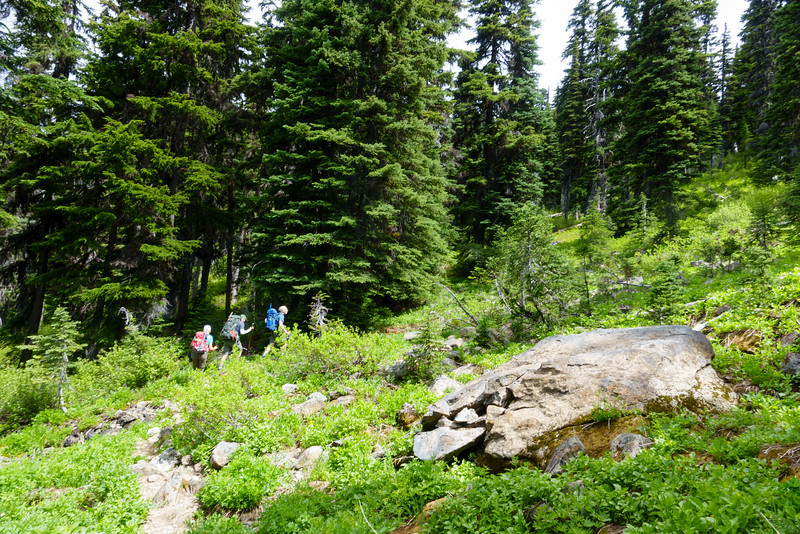Walking up the beautiful trail that leads to Paddy-go-Easy pass.