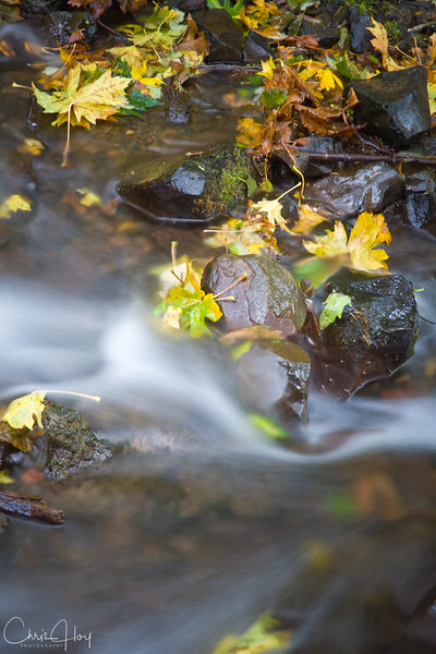 Wahkeena Falls, Columbia Gorge, Oregon