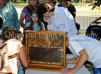 2010-09-04 - Grapevine - Nash Farm - Buzz about Bees