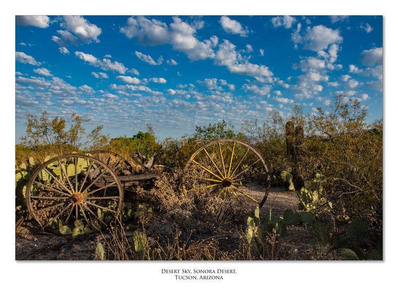 Arizona_050617_0384 border.jpg