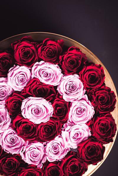 Rose Inspired (2nd Day)--2.jpg