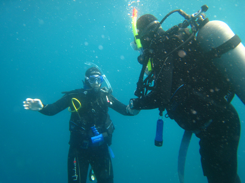 Diving in the Galapagos (82 of 392)