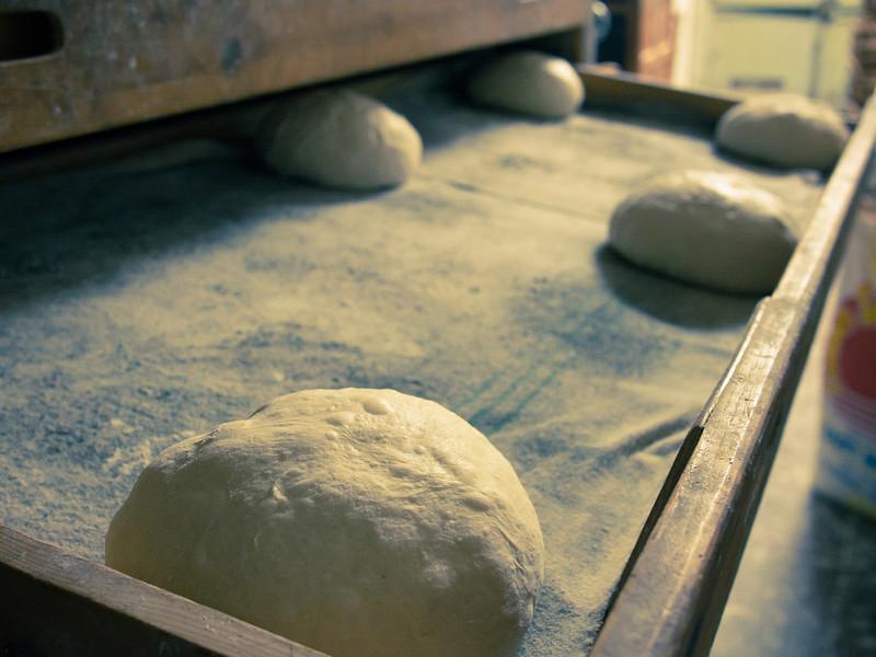 bread rising in drawer.jpg