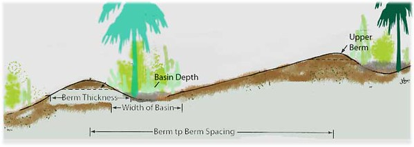 Side view of a berm at the downhill side.