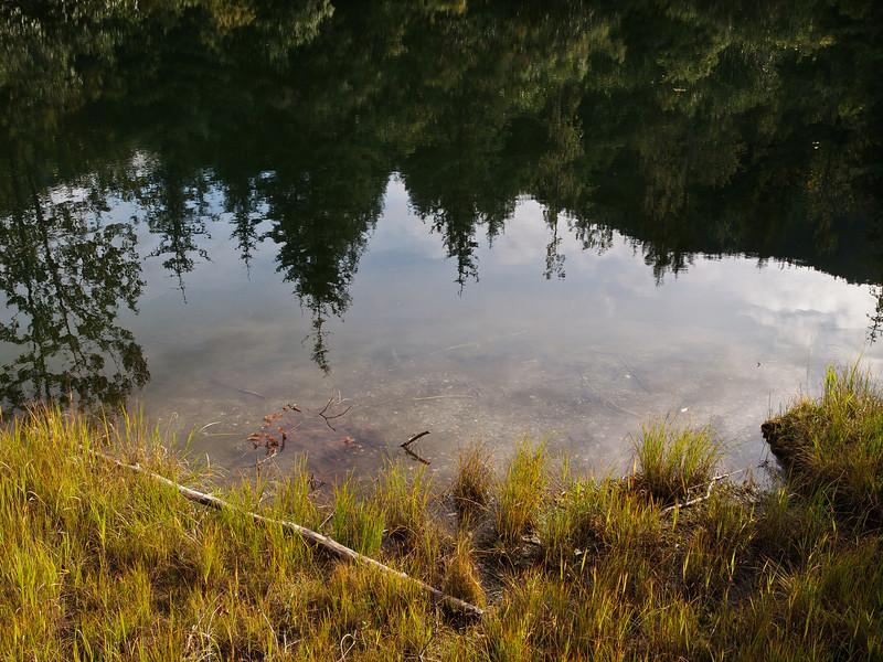 mendenhall_glacier_pond_2.jpg