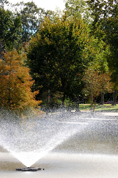 Girard Park Lafayette, LA