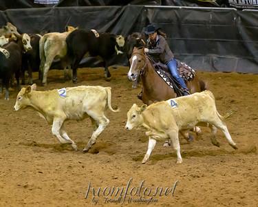 San Antonio Rodeo USTPA 2015