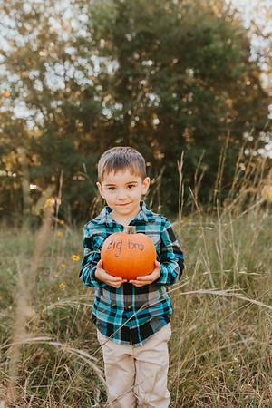 Fall Minis - Powe Family