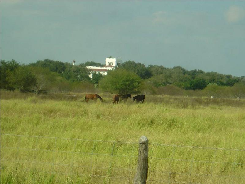 DSC03556-King Ranch House-King Ranch Tour-Thanksgiving-Kingsville TX- Nov 2008.jpg