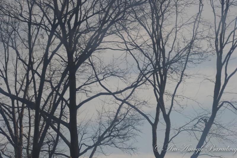 2012-12-23_XmasVacation@NewYorkCityNY_180.jpg