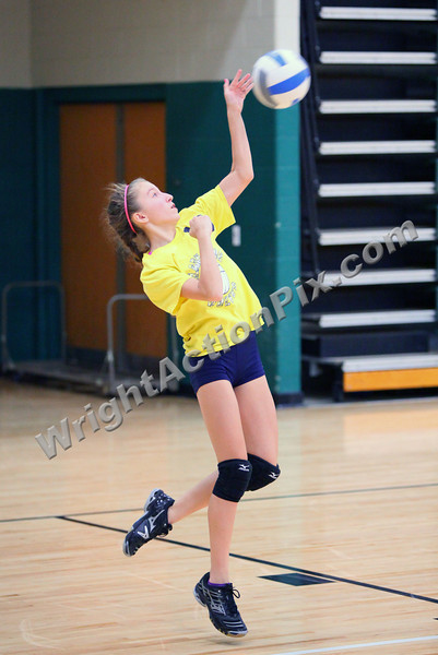 2011 Clarkston Volleyball