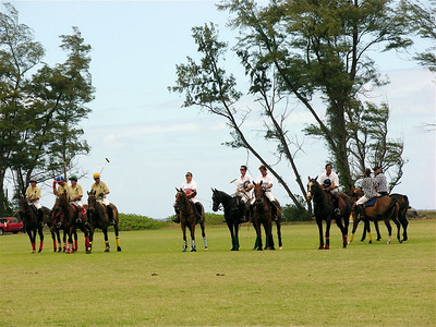 Polo Match Oahu