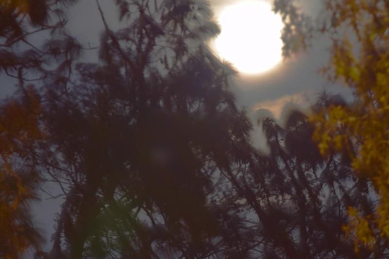 101a Super Moon 12-3-17.jpg