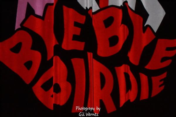 """February 2016- SVA & BC Present """"Bye Bye, Birdie"""""""