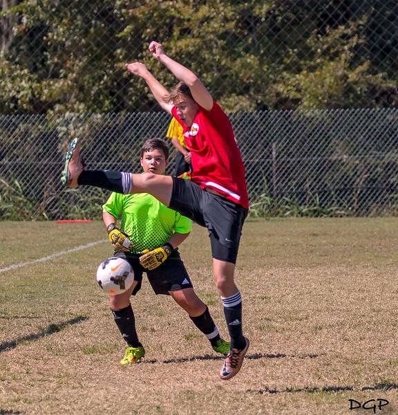 Crane Kick