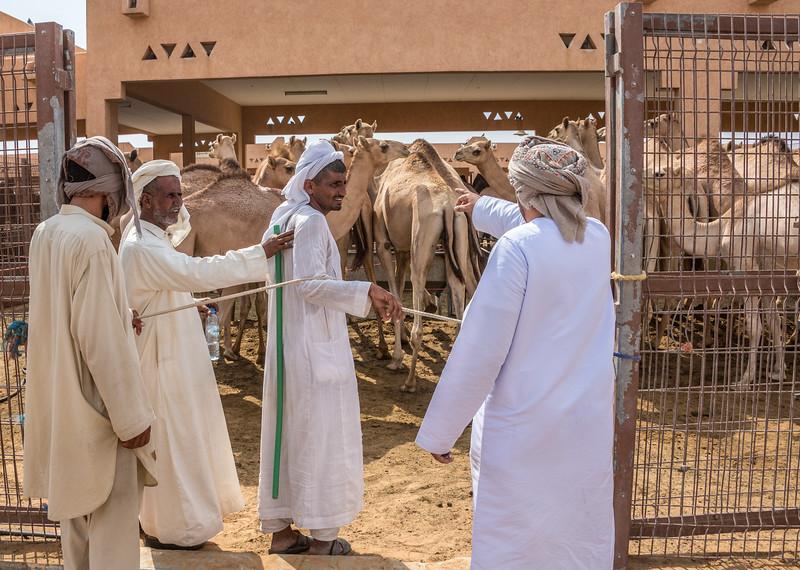 Abu Dhabi-1261.jpg