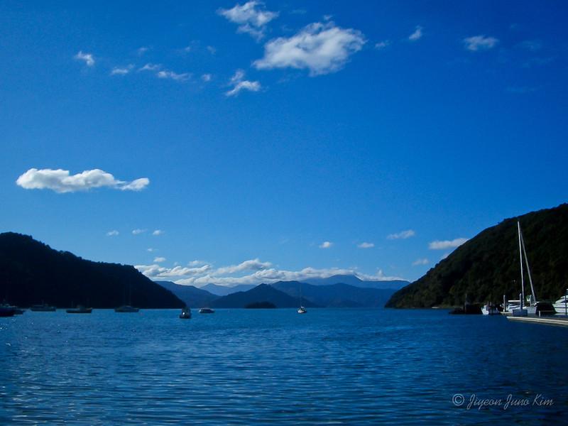 New Zealand-South Island-8100.jpg