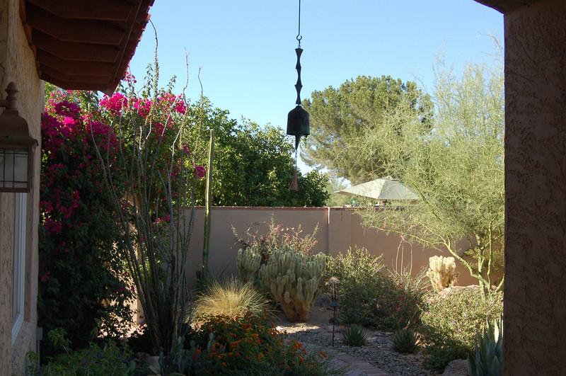 20120607_Scottsdale Back Yard_024.JPG