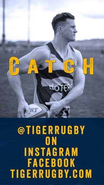 Catch Tiger04.jpg