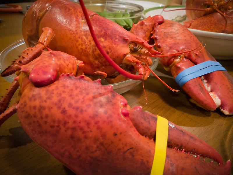 2017 01/07: Lobstergiving (Mobile)