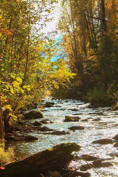 fall 2019 cda river