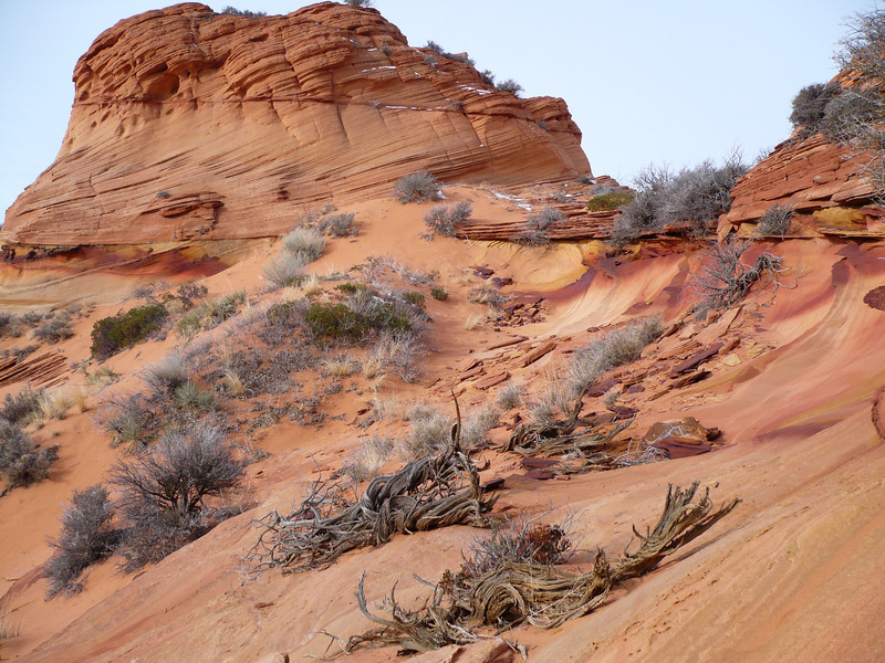 South Coyote Buttes 13