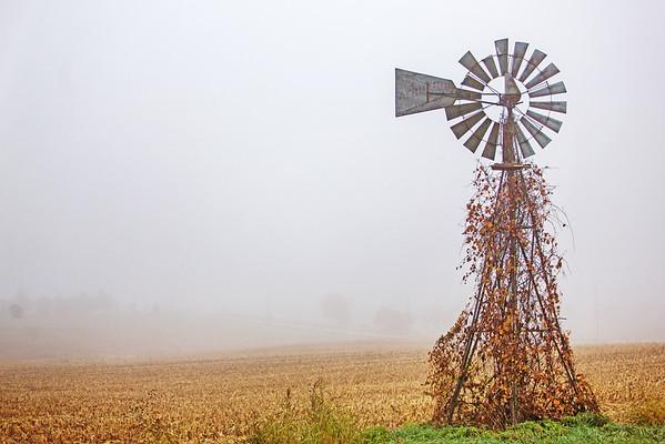Fall Fog 10.24.14