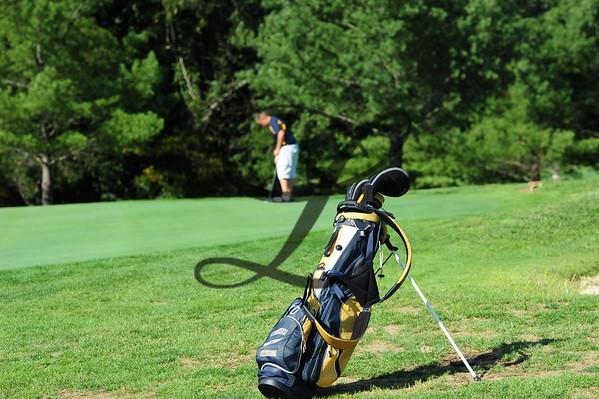 Golf VC & WHS 2015-16