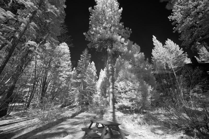 tahoe_567.jpg
