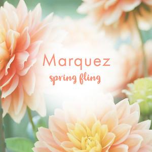 051919 - Marquez