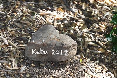 Keba 2018
