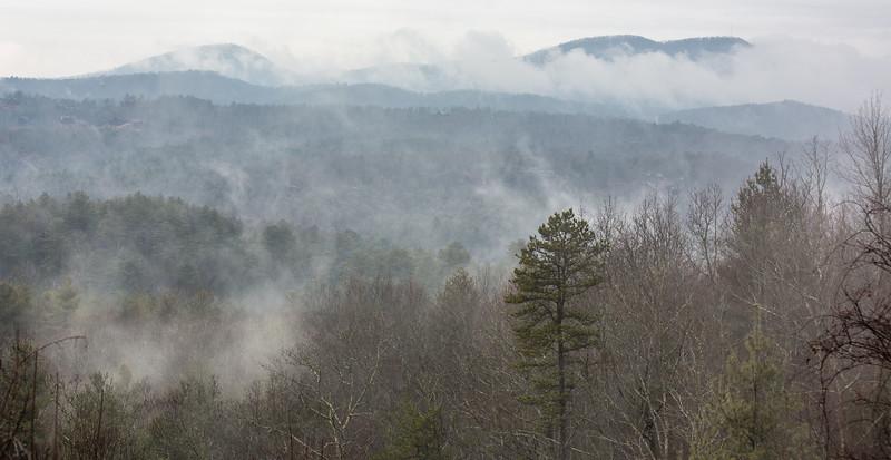 Foggy Appalachian_.jpg