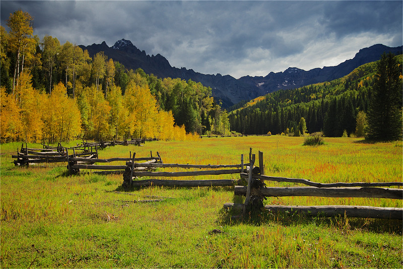 Colorado Meadow