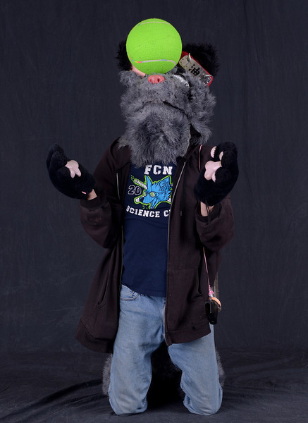 Motor City Furry Con 2014