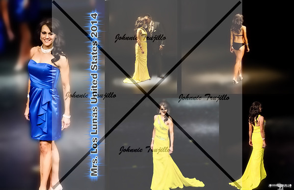 2014 Mrs. New Mexico United States - Video