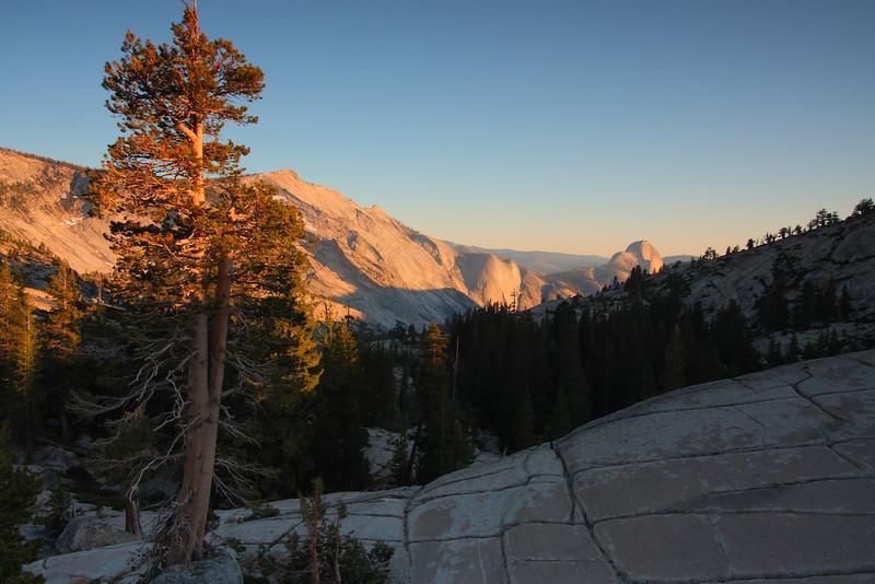 Yosemite 50.JPG
