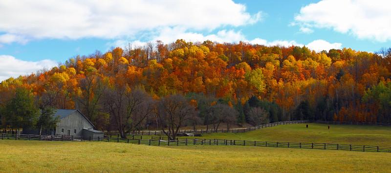 Hockley Valley Horsefarm Pano.jpg