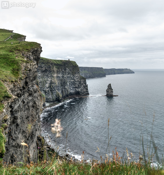 20160625_CLIFFS_OF_MOHER_IRELAND (17 of 24)