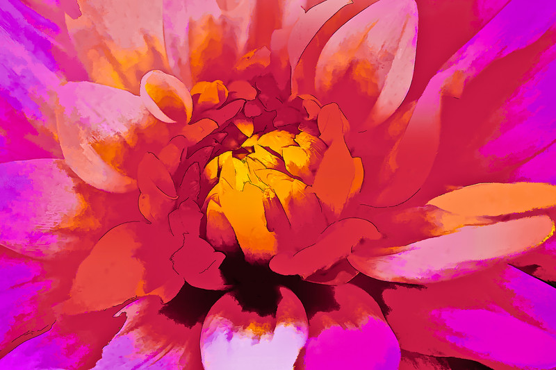 Colorful abstract photograph painting of a pink blooming flower.