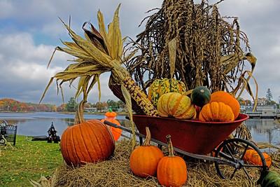 Maine -Fall Harvest