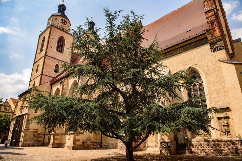 14-Wittenberg-0159-FB.jpg