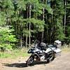 My Bike Trip - DAL to FLL  - 01