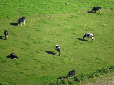 Ponta DelGada, Azores Portugal Dec 4