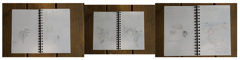 Supporting my youngest son's love of drawing by starting a sketchbook habit for all of us.