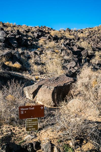 Petroglyph-National-Monument-0480.jpg