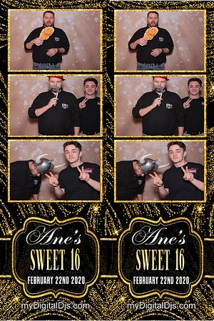 Ane Sweet 16 Party