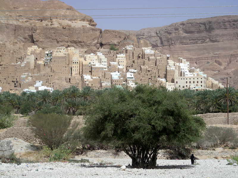 a village along the wadi basin in the Hadramout