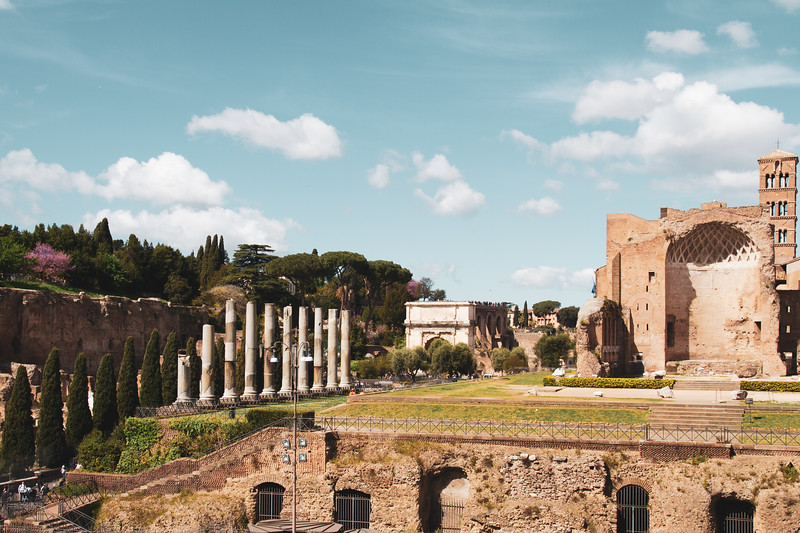 Palatine Hill from Colosseum