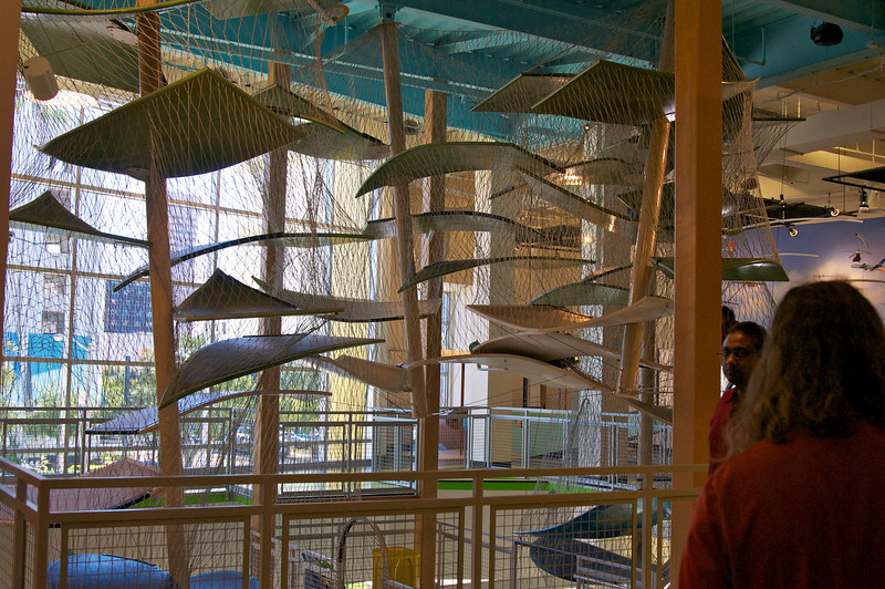 033-20101108-Eric's Visit Nov 2010 152.jpg