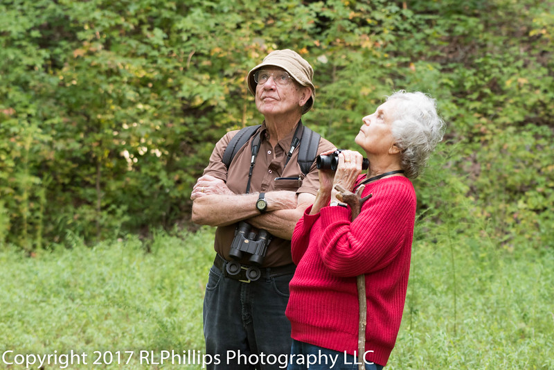 Birding really stretches your neck as you are always looking up...!